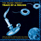 Traces of a Feeling - Paler's Project